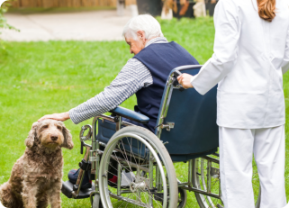 elderly man in wheelchair petting a dog